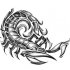 afbeelding van scorpio14