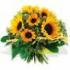 afbeelding van petra zonnebloem