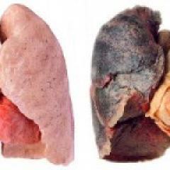 Roken en je longen